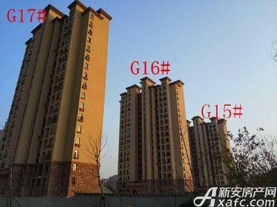 高速铜都天地G15#—G17#项目进度(2017.11.28)