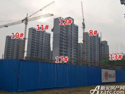 大地凤凰城8#、10#、11#、12#、13#、17#工程进度(2017.12.6)