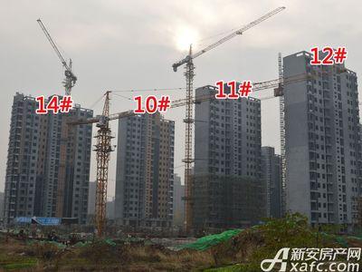 大地凤凰城10#、11#、12#、14#工程进度(2017.12.6)