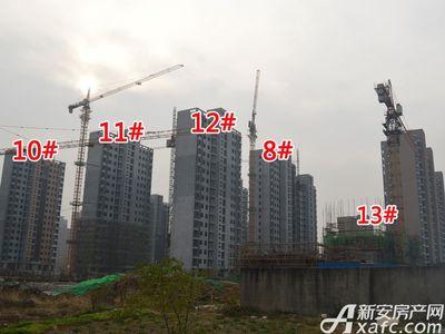 大地凤凰城8#、10#、11#、12#、13#工程进度(2017.12.6)