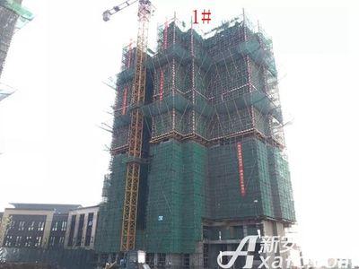 新城·悦府新城·悦府1#楼工程进度(2017.12.19)