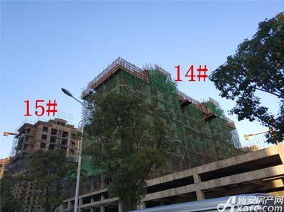天景庄园14#、15#项目进度(2017.12.21)