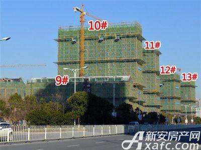 置地·康熙左岸9#、10#、11#、12#、13#工程进度