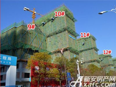 置地·康熙左岸9#、10#、11#、12#工程进度