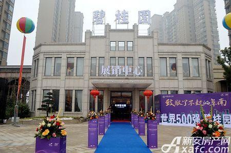 阜南碧桂园实景图