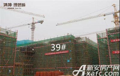 鸿坤理想城工程进度(2018.1)