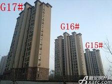 高速铜都天地G15#—G17#楼项目进度(2018.1.23)