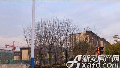 珠江翰林雅院2018年1月工程进度