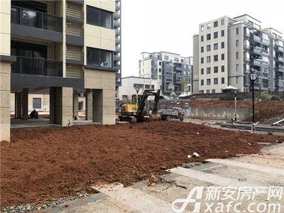 梅林国际绿化施工中【20180131】