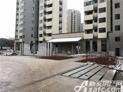 梅林国际绿化施工中【20170131】