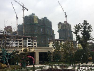 恒大江北帝景2月工程进度