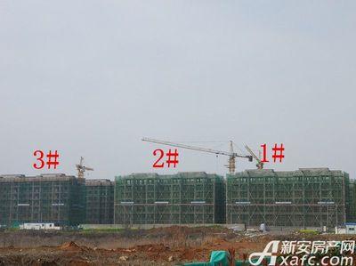 栖凤名城地块一1#、2#、3#项目进度