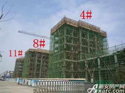 栖凤名城地块二4#、8#、11#项目进度