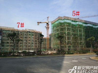 栖凤名城地块二5#、7#楼项目进度