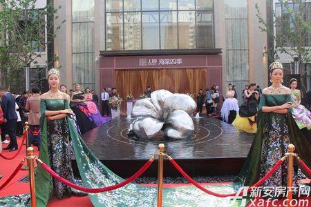 上坤海棠四季活动图