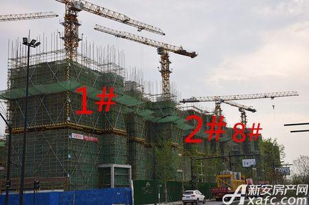 万科苏高新中央公园工程进度