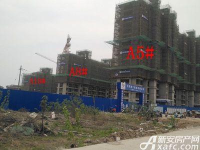 加侨侨城壹号A5#、A8#、A10#项目进度(2018.04)