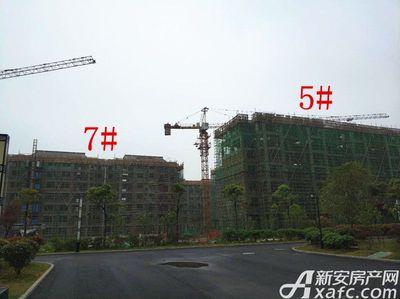 栖凤名城地块二5#、7#楼项目进度(2018.4.23)