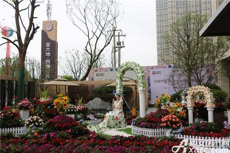 金大地悦澜公馆活动图