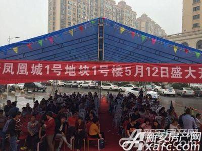 大唐凤凰城活动图