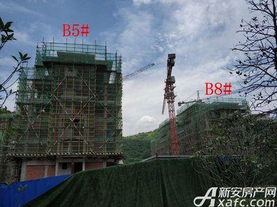 地矿龙山湖苑B5#、B8#项目进度(2018·5·15)