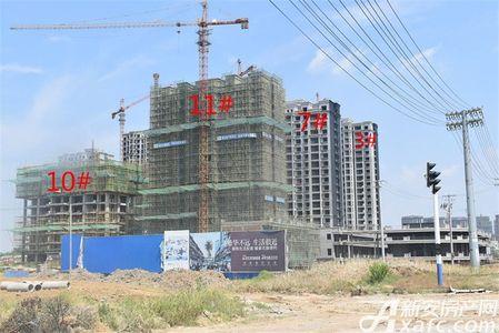 保来国际城工程进度
