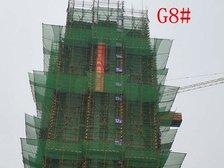 高速铜都天地G8#项目进度(2018.6.11)