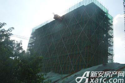 中锐尚城印象2018年7月份 施工楼栋
