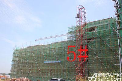 观湖花园5#工程进度(2018.7.31)