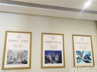 金大地悦澜公馆项目墙