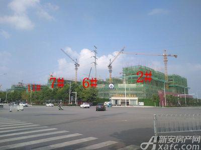 碧桂园城市之光2#、6#、7#、11#项目进度(2018.08)