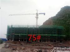 淮北凤凰城75#工程进度20180816
