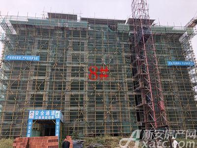 淮矿·东方蓝海工程进度