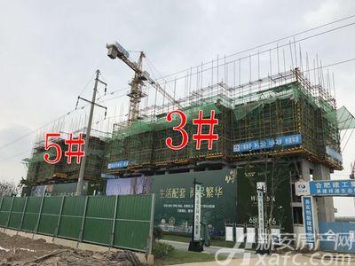 祥源生态城景秀园工程进度