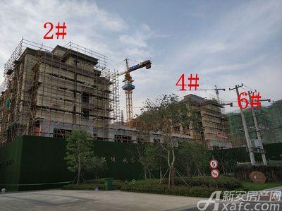 淮矿东方蓝海2#、4#、6#项目进度(2018.9.26)