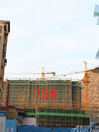淮北凤凰城75#工程进度20181114