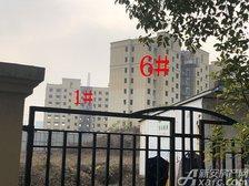 公园道B区御湖1#、6#楼12月进度(2018.12.17)