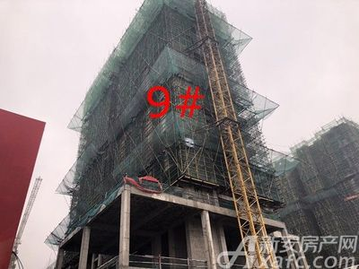 高速·海德公馆高速·海德公馆项目进度(2019.2)