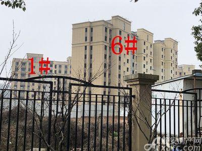 公园道B区御湖1#、6#楼2月进度(2019.2.26)