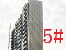 铜陵碧桂园5#楼项目进度(2019.1.27)