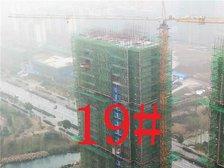 铜陵碧桂园19#楼项目进度(2019.2.27)
