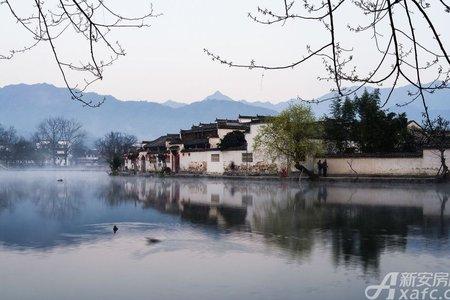 绿城•黄山桃李春风配套图