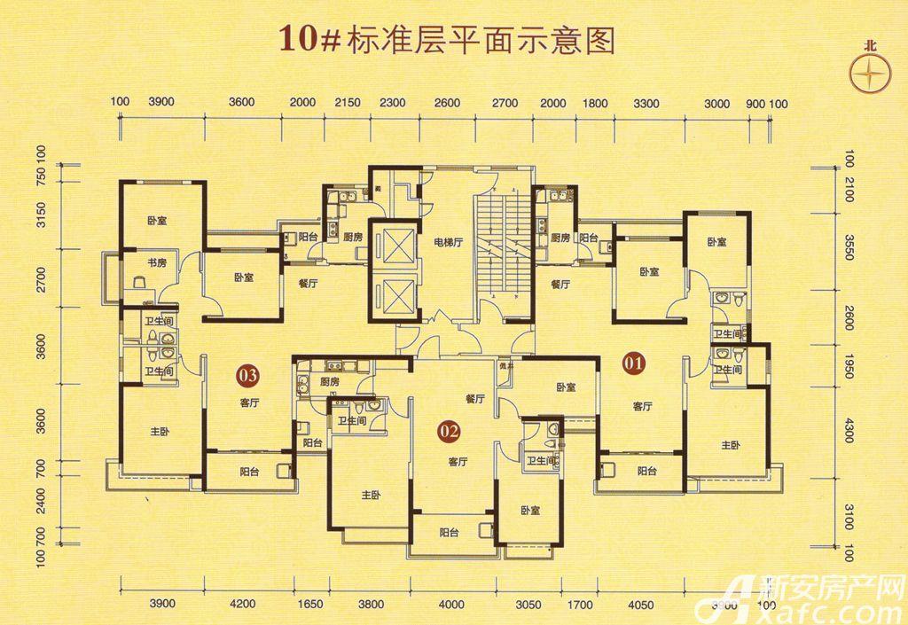 恒大城10#01户型3室2厅135平米