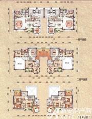 碧桂园滨湖城钻石·墅G65户型7室3厅630㎡