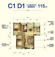 宝能城C1/D1户型3室2厅115㎡