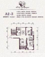 保利香槟国际A2-3户型3室2厅103.68㎡