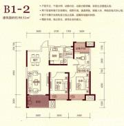保利香槟国际B1-1户型3室2厅123.55㎡