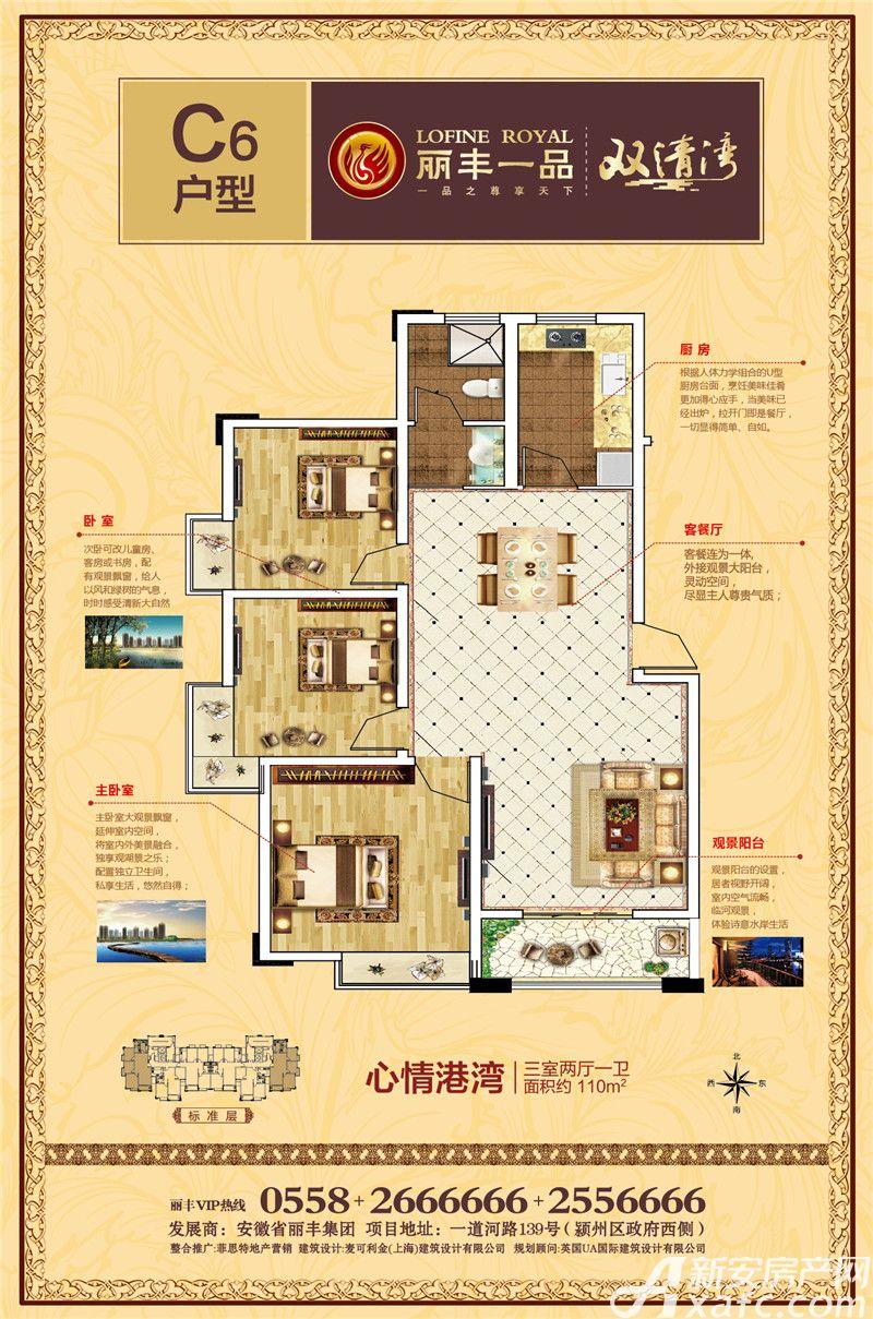 丽丰一品C63室2厅110平米