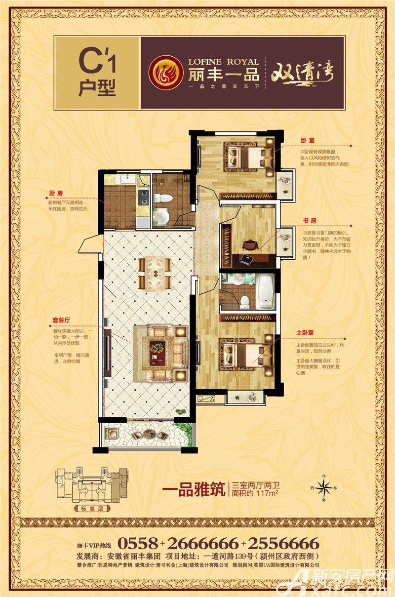 丽丰一品C\'13室2厅117平米
