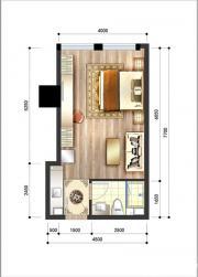 呈泰双子座A11室1厅43.73㎡